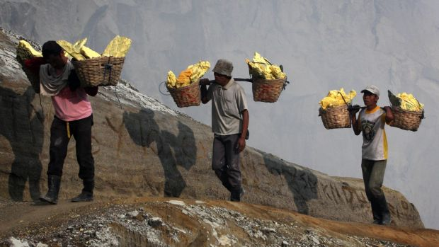 Miners carry baskets of sulphur in Indonesia. The country's protectionist policies ban the export of unprocessed minerals.