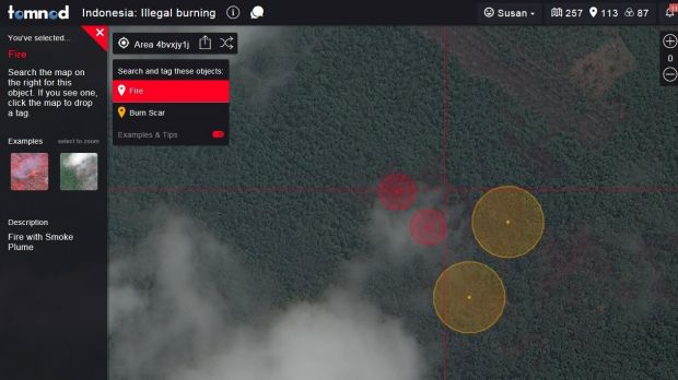 Nodders are asked to search satellite imagery and tag active fires and burn scars.