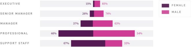 Gender Disparity in Financial Services