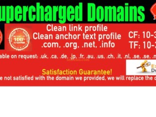 selling expired domains with high metrics