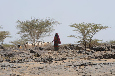 Worldwide droughts, like that in a village northeast of Nairobi, expose rural communities to food shortages.