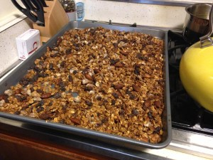 Fruit n Nut Granola - 7