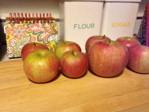 Trout Farm Apple Pie - 1