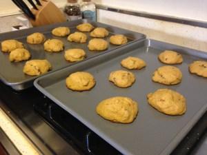 Pumpkin Chocolate Chip Cookies - 13