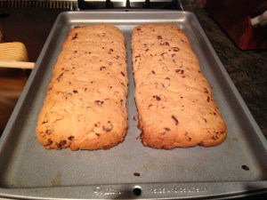 Chocolate Chip Coconut Biscotti - 14