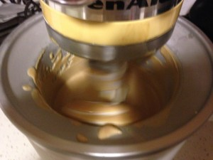 Peanut Butter Honey Ice Cream - 9