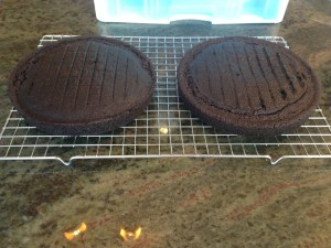 Chocolate Cake - 13