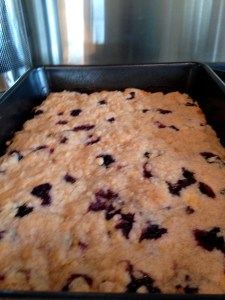 Blueberry Buckle - 17