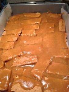 Cranberry Walnut Chocolate Brickle - 5