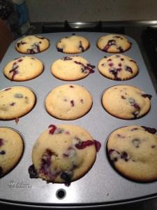Blueberry Muffins - 11