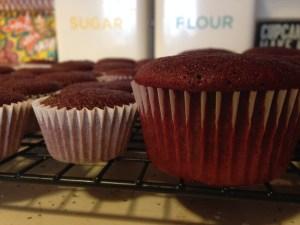 Red Velvet Cupcakes - 24