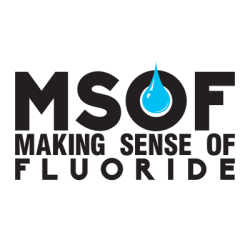 Making Sense of Fluoride