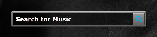 Grooveshark search box design example