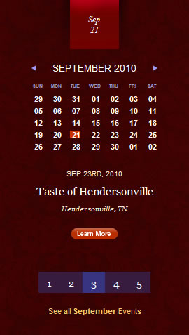 Winter in Tennessee date picker design example