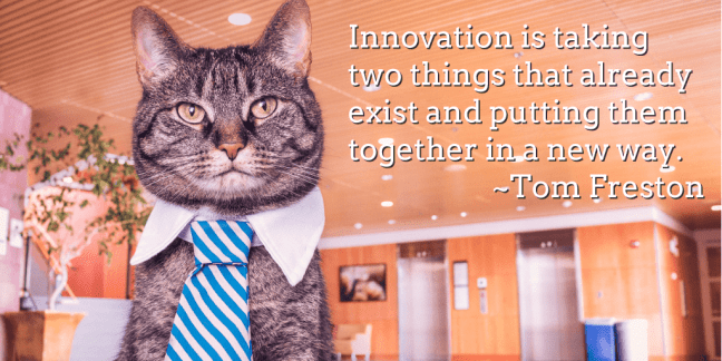 Innovation is taking two things that already exist and putting them together in a new way.