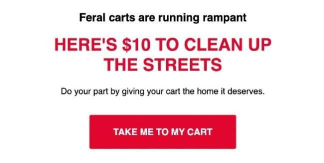 Shinesty abandoned cart email copywriting