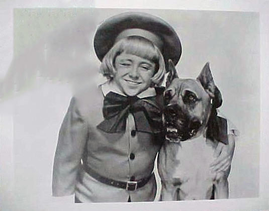 The dog in the comics Buster Brown, which would later be adopted by Brown Shoe Company, was an American Pit Bull Terrier named Tige.