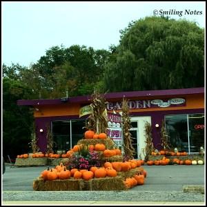 pumpkin-fall-season
