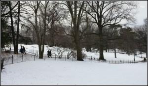 snow-central-park