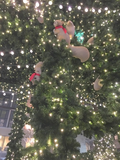 Lord and Taylor Holiday lights