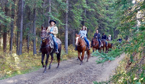 horseback riding in summer