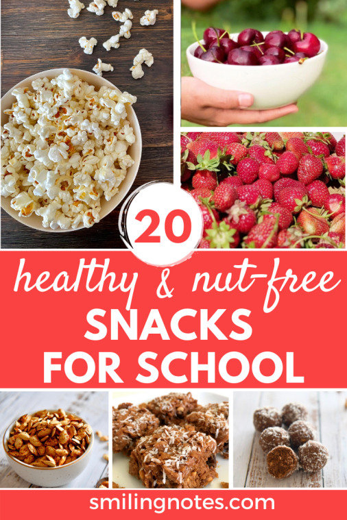 HEALTHY NUT FREE SNACKS FOR SCHOOL - It is back-to-school season and with most schools starting in person, here are some healthy and nut-free snack options that you can pack for your kiddos in their lunch box.