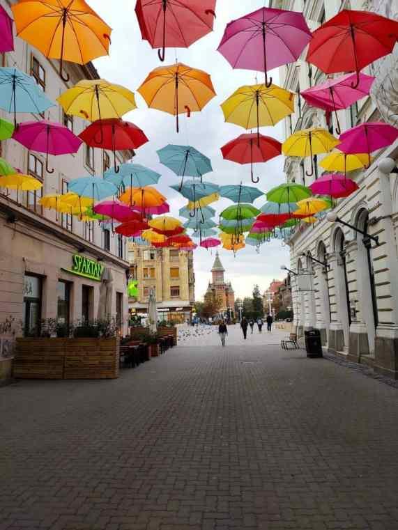 24 hours in Timisoara