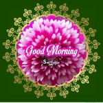 Good Morning Beautiful Flower Image Smitcreation Com