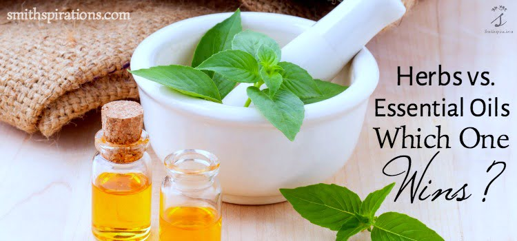 Herbs v Essential Oils