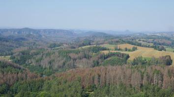 Uitzicht over het gebied waar we de afgelopen week hebben gelopen. We herkennen veel. Verdrietig is dat we zoveel dode bomen zien. Minstens 20% legt het loodje. Iets met beestjes en droogte.