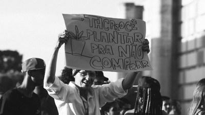 liberdadethcproce ativista preso cultivar maconha PROFESSOR THCPROCÊ DA MACONHA