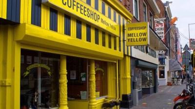 por que os coffeeshops de amsterda estao fechando Por que os coffeeshops de Amsterdã estão fechando?