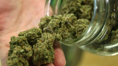 virginia ocidental se torna o 29o estado legalizar maconha medicinal Virgínia Ocidental é o 29º estado americano a legalizar maconha medicinal
