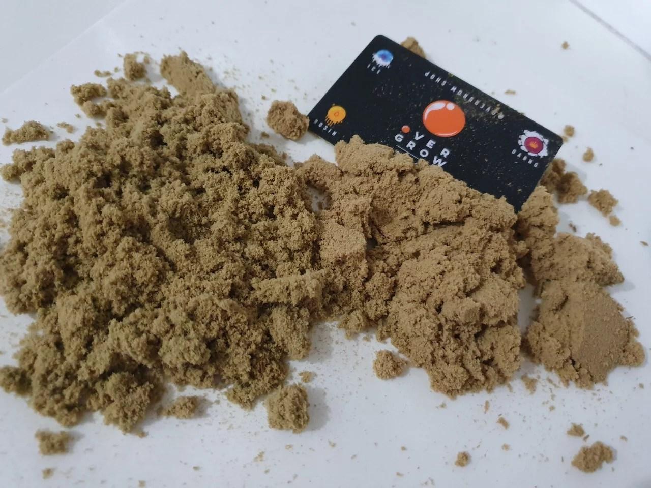 Pioneira no segmento de extrações sem solventes lança novidade, confira