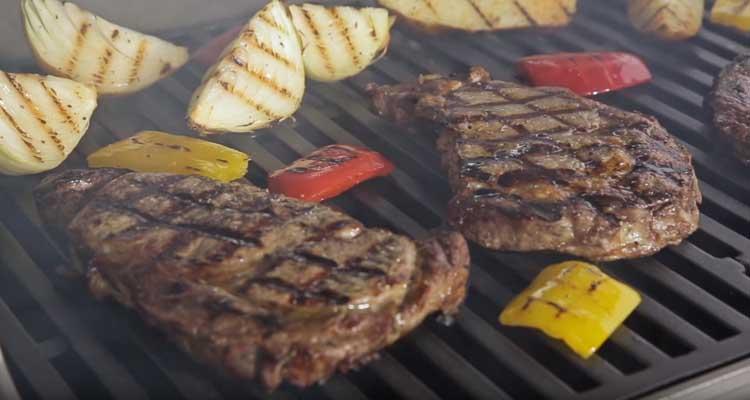 Weber Spirit E310 grill grates