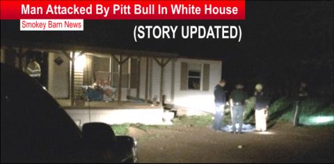story updated pitt bull attack slider