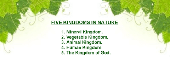 Five kingdoms of Nature pic
