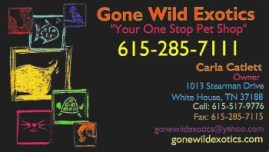 Gone Wild animal bus card a