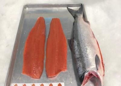 Wild Frozen Sockeye Salmon