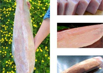 Wild Frozen Albacore Tuna