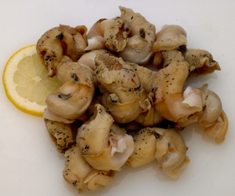 Frozen Cooked Whelk Meat