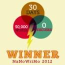 How to be a #NaNo Winner