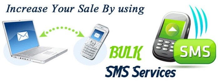 Bulk SMS Marketing is Important for Your Business