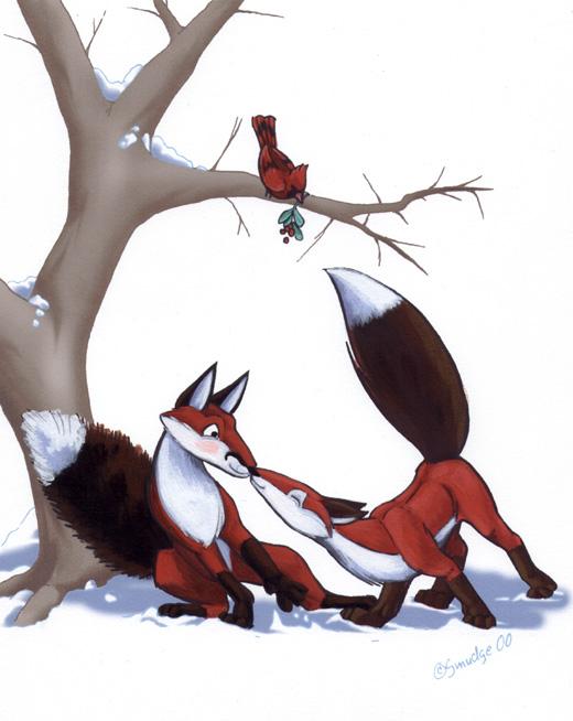 Fox Surprise