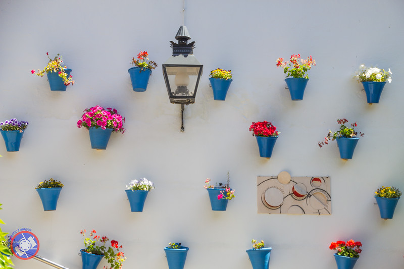 Wall Decorated with Flowers in the Courtyard of Zoco Artisan Market, Calle Judios, Cordoba (©simon@myeclecticimages.com)