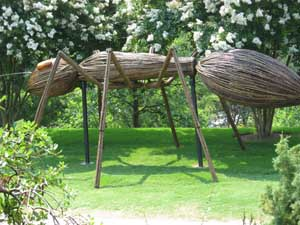 Big Bugs at the Atlanta Botanical Garden