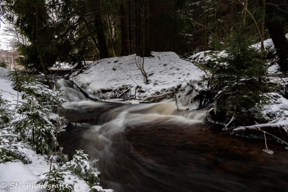 Wasserspiel im Greifensteinwald