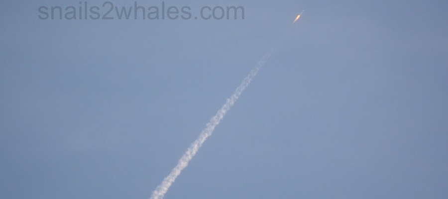 rocket launch viewed from cocoa beach