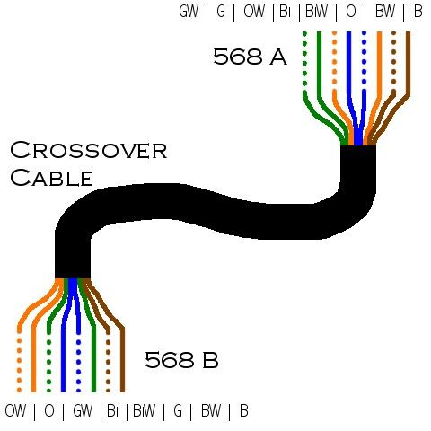 wiring diagram for cat5 cable wiring diagram how to make a cat5 patch cable warehouse cables standard cat 5 wiring diagram
