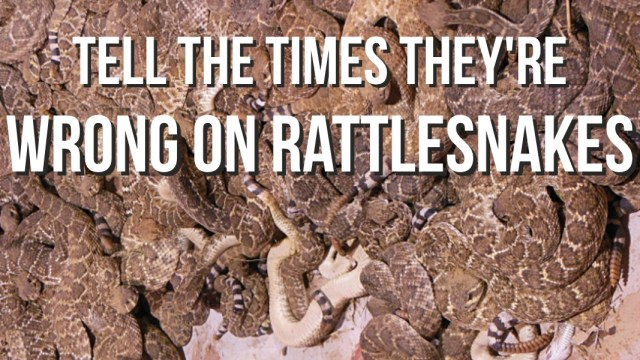 Tell the Times they're wrong on rattlesnakes